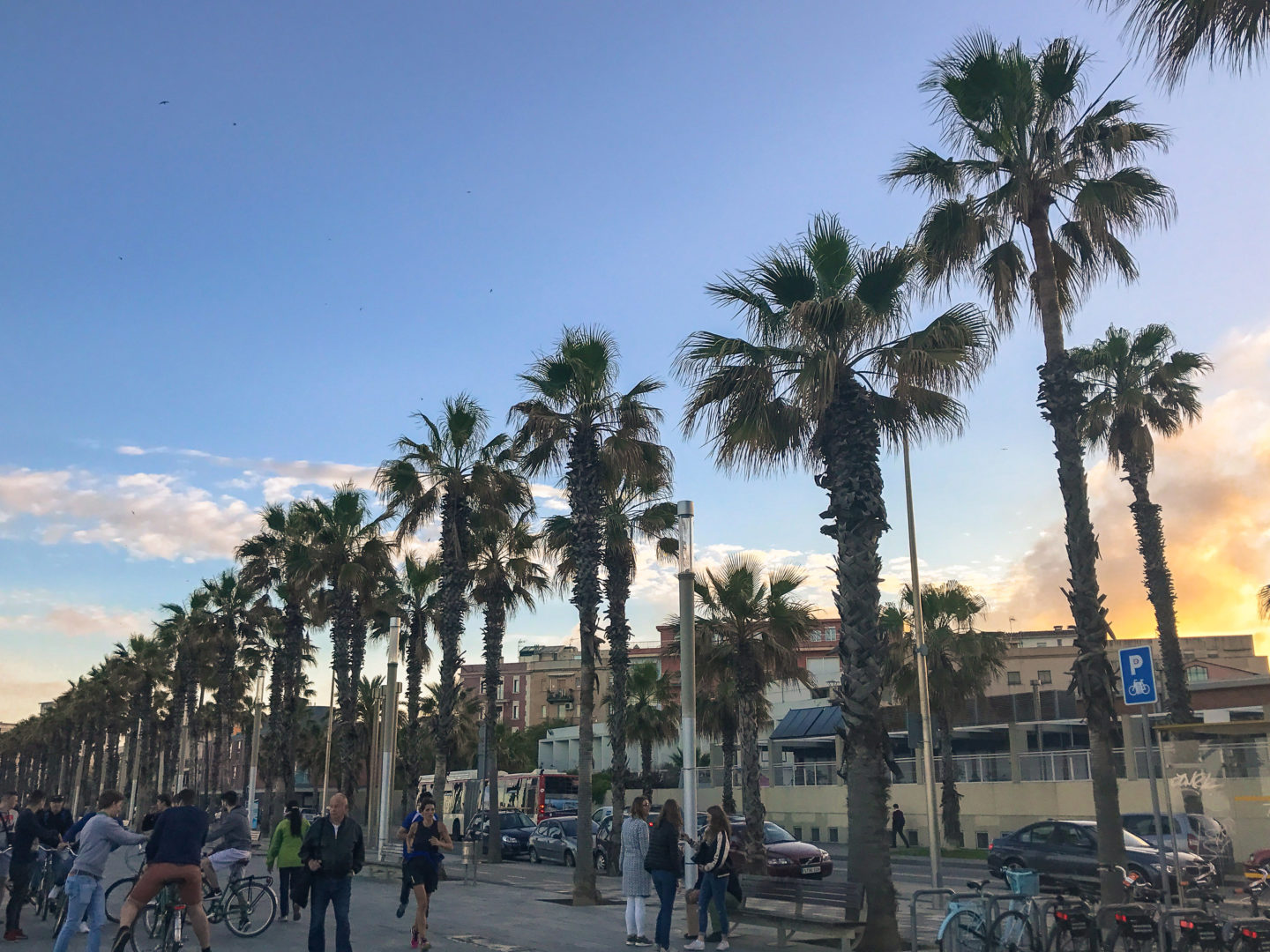 Quick Barcelona Travel Itinerary | What to See & Where to Eat | Playa de la Barceloneta