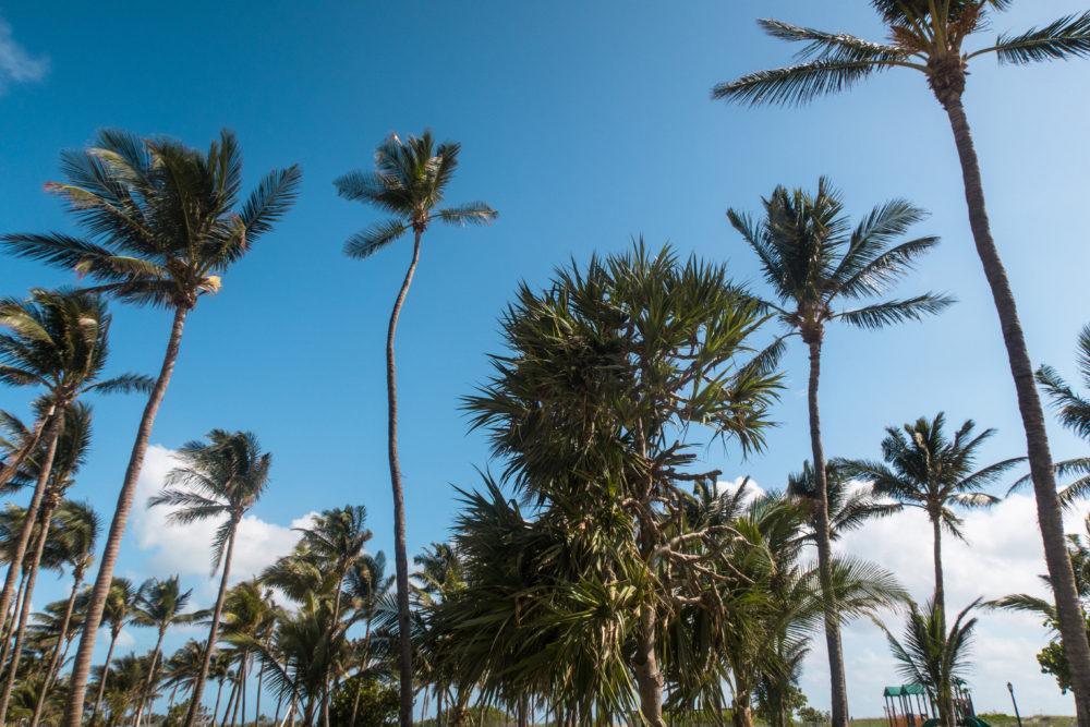 Ocean Drive South Beach Miami
