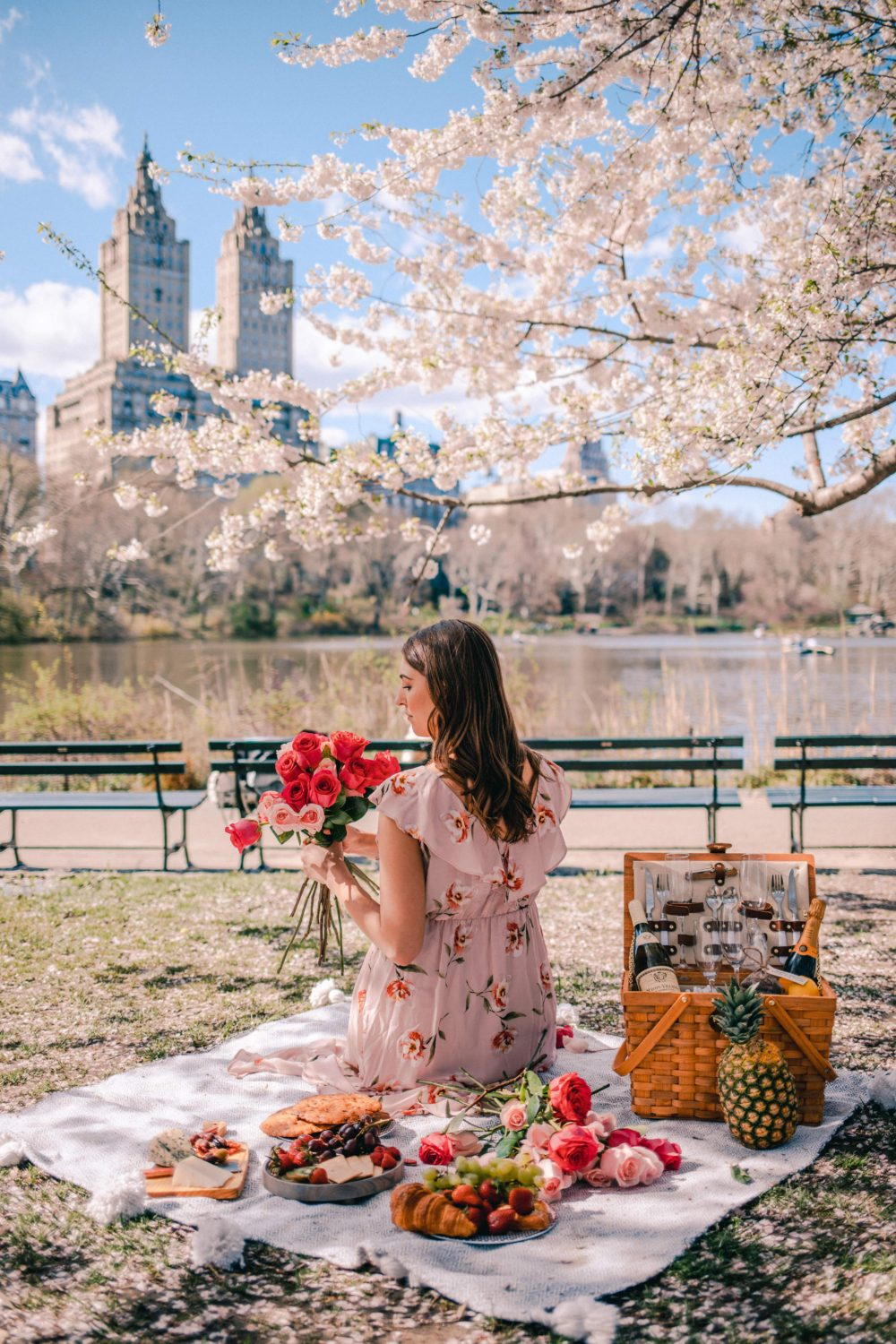 6 Charming Things to do in NYC During Spring: Picnic in Central Park