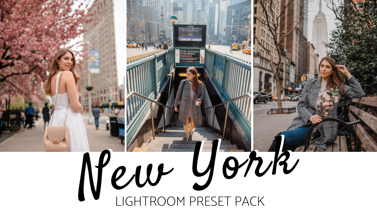 Lightroom Presets for Desktop Dana Berez New York Pack